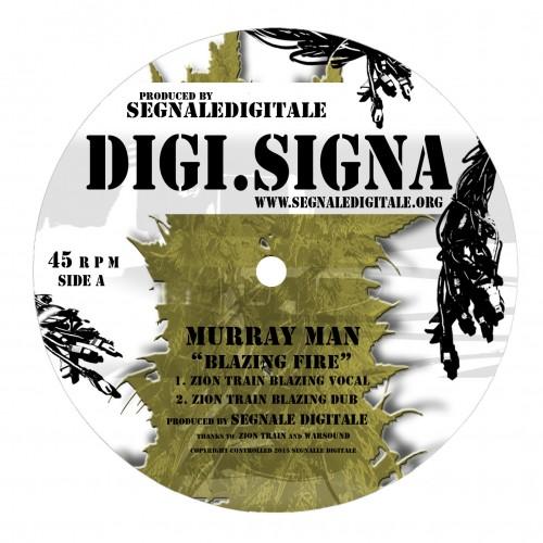 """2×12"""" from Digi.Signa"""
