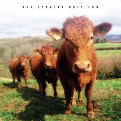 "Dub Dynasty – ""Holy Cow"""