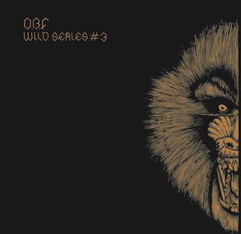 "O.B.F Sound System i seria ""Wild"" – 2×12"""