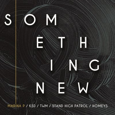 "[Review] Marina P/KSD/Stand High Patrol/TWM/Homeys – ""Something New EP"" (Homeys Records)"